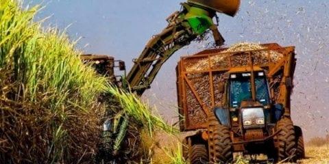 etanol-hidratado-producao
