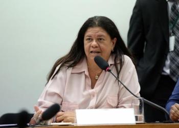 A deputada Laura Carneiro é a autora do PL 10.203. Foto: Cleia Viana/Câmara dos deputados