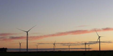 Petrobras, Total e Total Eren buscam projetos em energia eólica e solar no Brasil