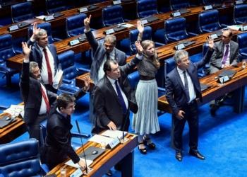 Plenário do Senado Federal durante sessão deliberativa ordinária. Ordem do dia. Foto: Marcos Oliveira/Agência Senado