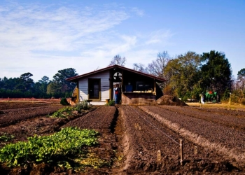 Assentamento rural. Foto: Ken Hawkins/ABr