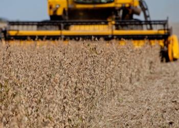 Projeto permite uso de biodiesel puro (B-100) nos automóveis e caminhonetes com capacidade de carga de até três toneladas / Foto: EBC