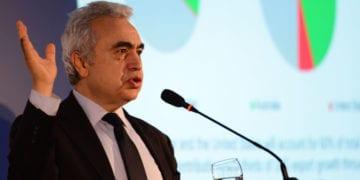 presidente da Agência internacional de Energia (IEA, na sigla em inglês), Fatih Birol. Foto: Stéferson Faria