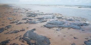 Força-tarefa tenta conter óleo em Abrolhos. Desastre ambiental atinge os nove estados do Nordeste / Foto: EBC