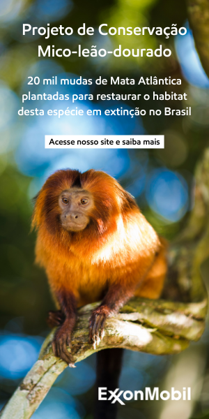 Publicidade ExxonMobil
