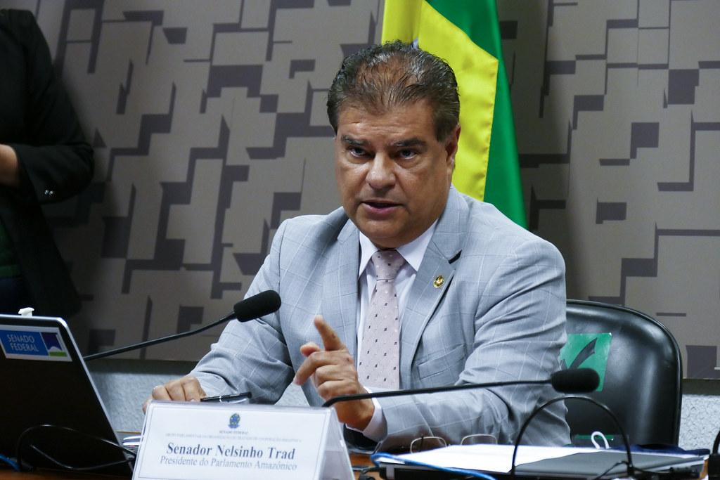Nelsinho Trad, do PSD do Mato Grosso do Sul, é o relator da BR do Mar (Roque de Sá, Agência Senado)